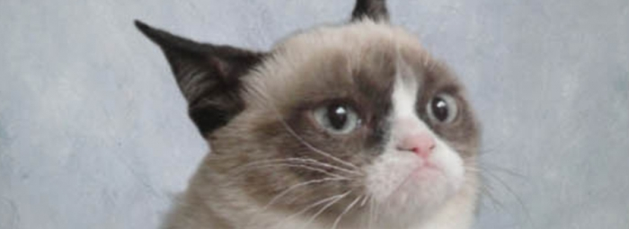 Metro Reviews: Grumpy Cat, Godus, Forrest Gump