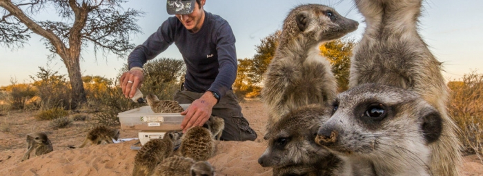 Wildlife Photographer of the Year Finalist Jen Guyton On Conservation & Photography