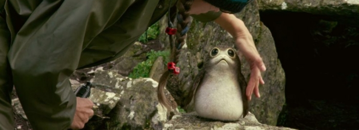 Star Wars Science – Porgs & Puffins With Ornithologist Mark Peck