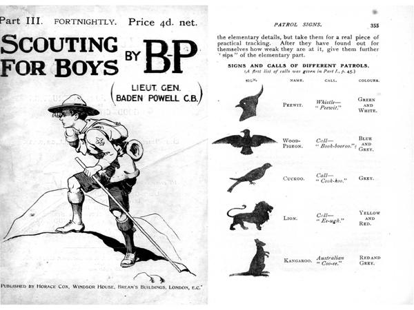 scoutingboys1